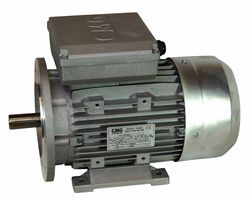 2 Pole 2900 Rpm Bcb Sales And Service